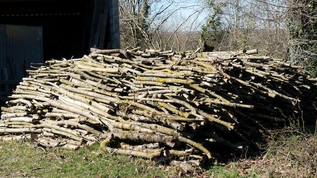 暖炉のための屋外の木の山 Premium写真