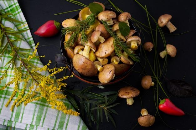 森狩りキノコと黄色の野草 Premium写真