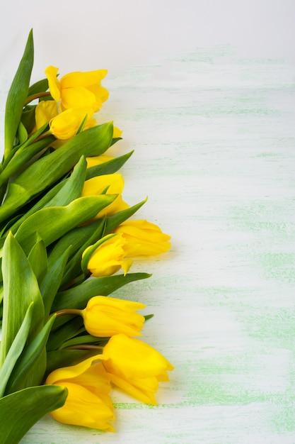 明るい緑の表面、垂直、コピースペースに黄色のチューリップの行 Premium写真