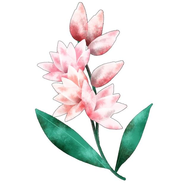 チューベローズの花の枝 Premium写真