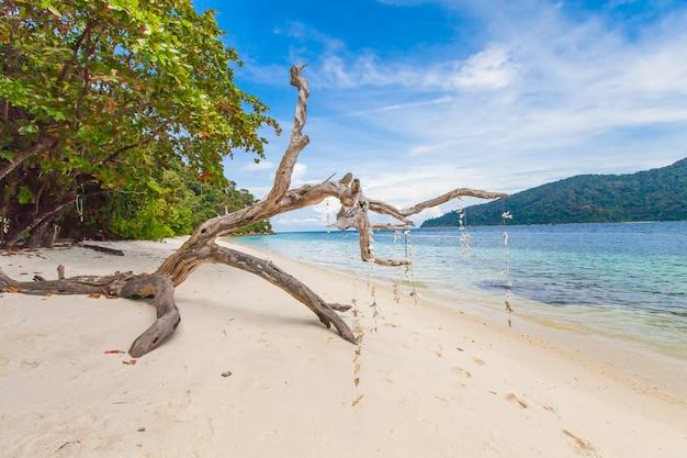美しい熱帯の楽園の海とタイの白い砂浜と青い空 Premium写真