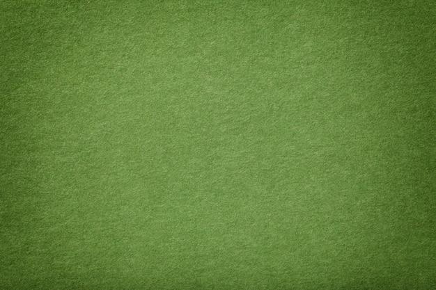 Светло-зеленая матовая замшевая ткань бархатной текстуры, Premium Фотографии