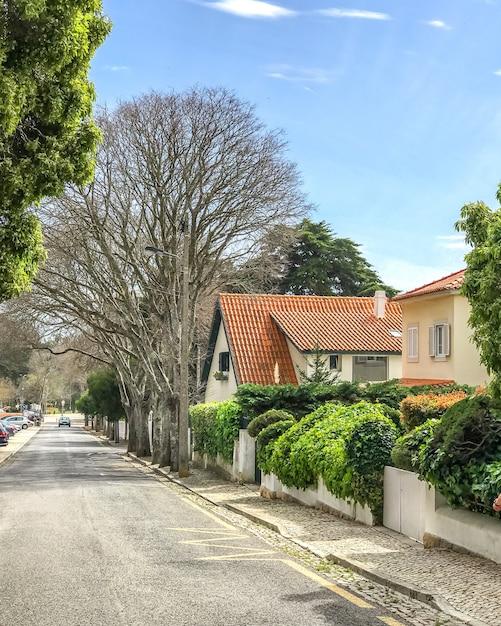 Желтый сельский дом с черепичной оранжевой крышей и сад с деревом в городе кашкайш, португалия Premium Фотографии
