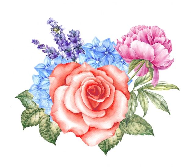 咲くバラの水彩イラスト。 Premium写真