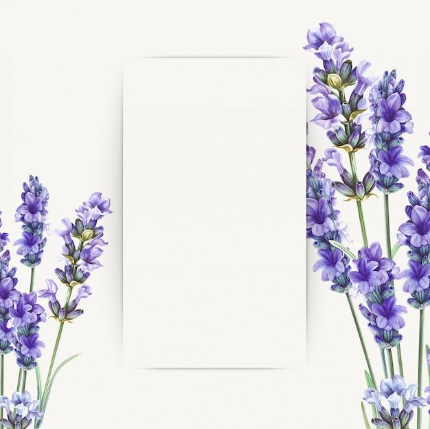 グリーティングカードデザインのラベンダーの花の花束。 Premium写真