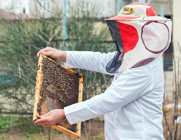 ミツバチの巣箱に蜂蜜と蜂の束を置く白い労働者の制服を着た養蜂家。 無料写真