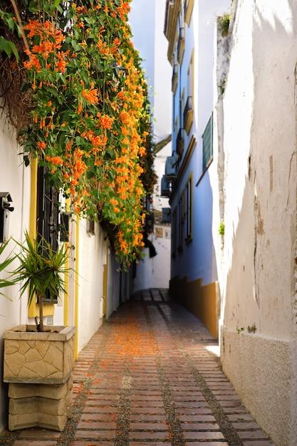 スペインのマルベージャの旧市街の花の家 Premium写真