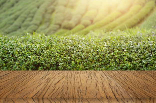 木製のテーブル背景の茶植物 無料写真
