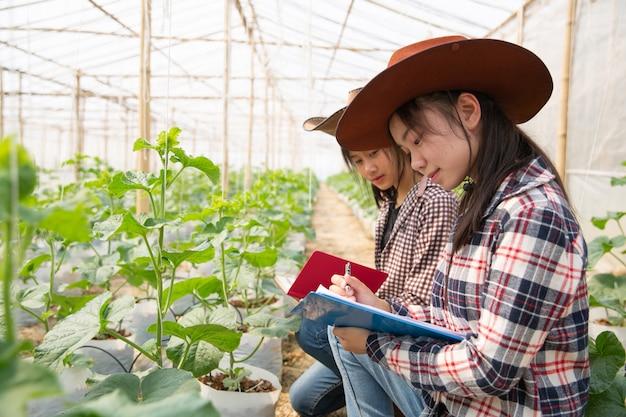 温室で成長している新しい種類のメロンを研究している若い農業技術者 無料写真