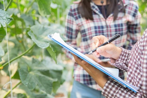 農業科学官、女性科学アシスタント。温室農業研究メロンで 無料写真