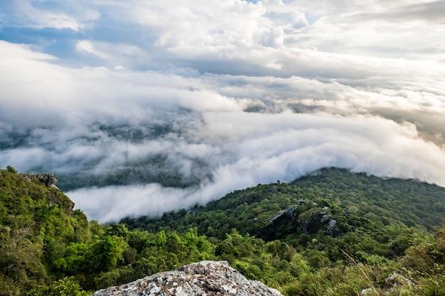 森の雲と日の出の空 無料写真