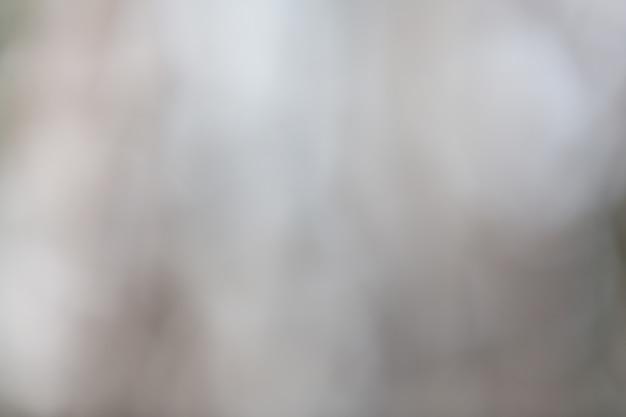 โบเก้น้ำตาลบนพื้นหลังเบลอธรรมชาติ องค์ประกอบของการออกแบบ Free Photo