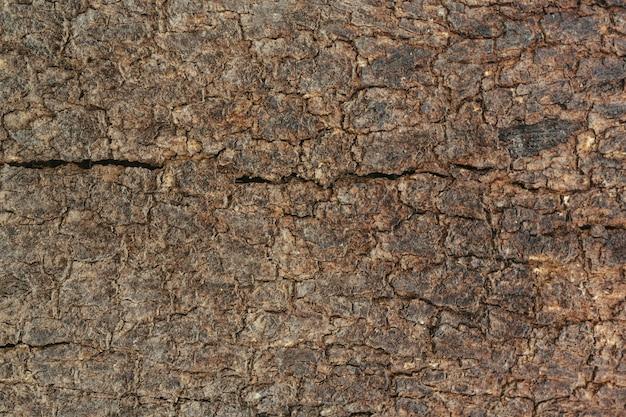 古い木目の背景。 無料写真