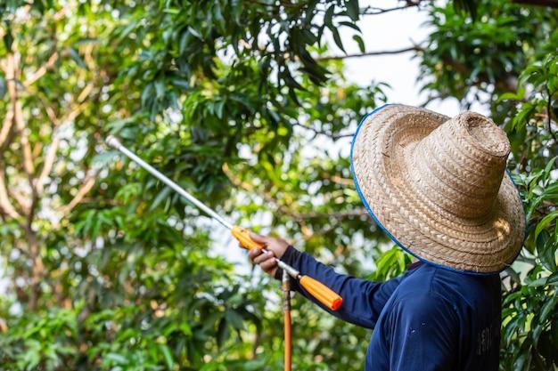 農家は庭にライチをスプレーします。 無料写真