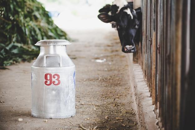 動物の納屋で牛を搾乳バケットのクローズアップビュー 無料写真