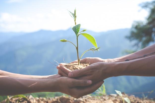 Охрана окружающей среды в саду для детей. Бесплатные Фотографии