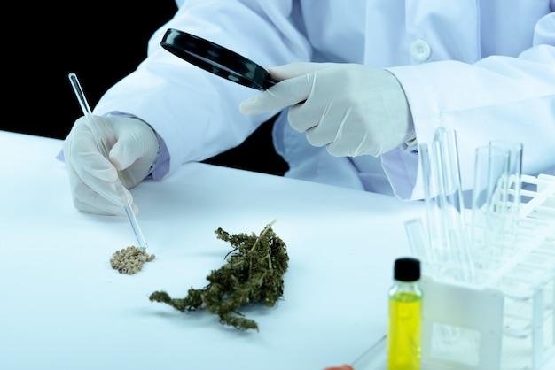 医師の手を握って、患者の医療用マリファナとオイルを提供します。 無料写真