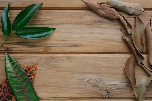 Красочные листья размещены на коричневой деревянной сцене. Бесплатные Фотографии