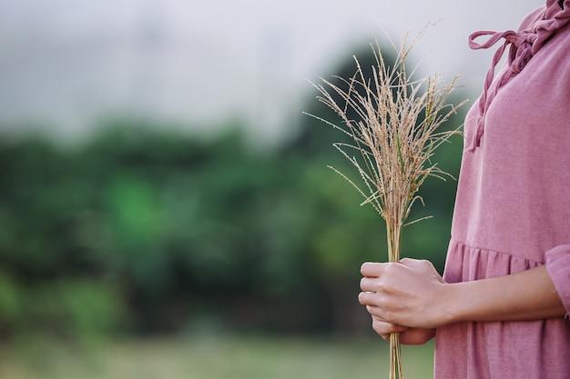 草原の花を保持している女性。 無料写真