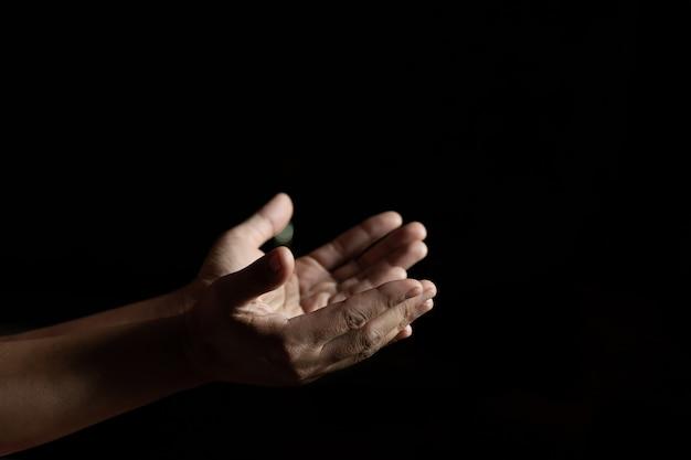手を上げる女性の手 無料写真