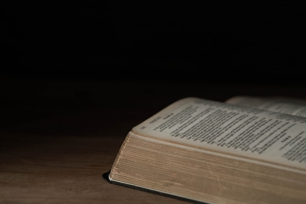 木の上の聖書 無料写真