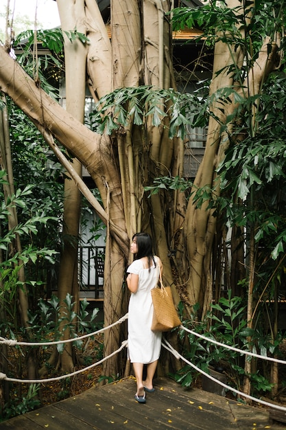 森の少女 無料写真