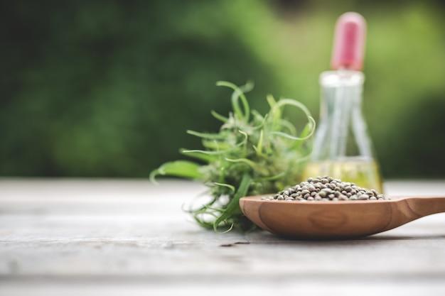 大麻、大麻の種子、大麻油を背景に緑の木と木の床に配置。 無料写真