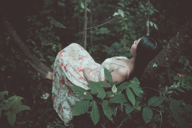 美しい女性のビンテージ写真は公園の木に横たわっていた 無料写真