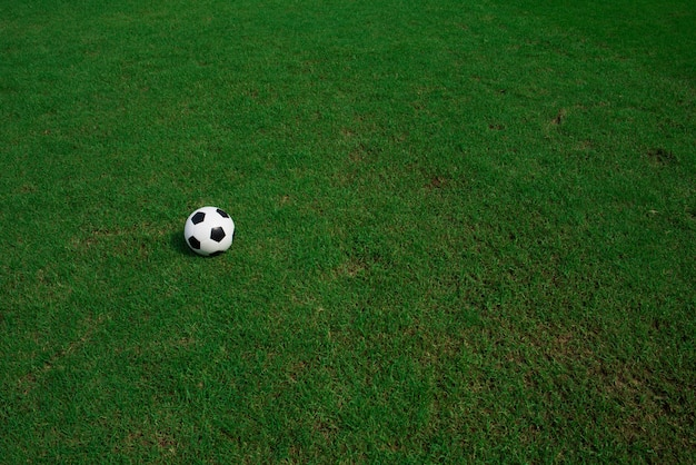 スタジアムの背景と芝生のサッカーボール 無料写真
