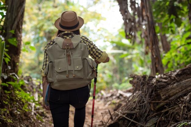 女性観光客が森を楽しんでいます。 無料写真