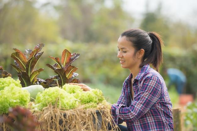 農家はグリーンオークレタス農場で働いています。 無料写真