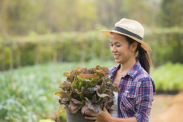 Фермеры работают на ферме из зеленого дуба Бесплатные Фотографии
