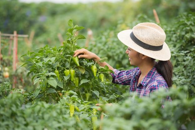 Среднего возраста женщина-фермер, с органическим перцем чили на руке Бесплатные Фотографии