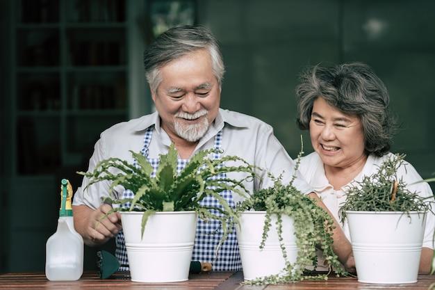 年配のカップルが一緒に話すことと鉢に木を植えること。 無料写真
