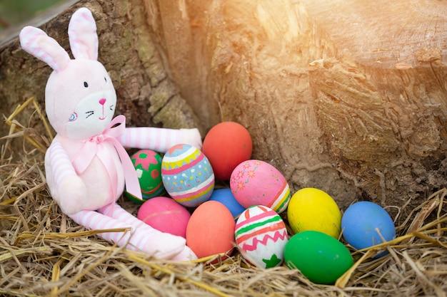 Фестиваль пасхальных яиц. Бесплатные Фотографии