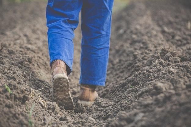 女性農民は土壌を研究しています。 無料写真