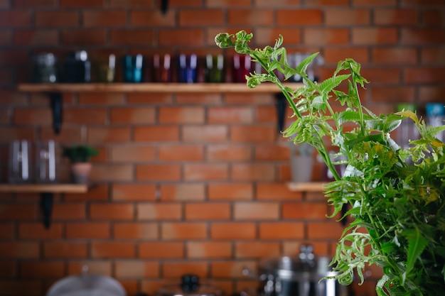 緑のシダが台所の床に上がってきます。 無料写真