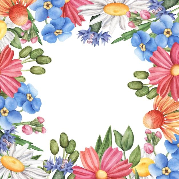Квадратная рамка, рама из полевых летних цветов с пустым пространством внутри Premium Фотографии