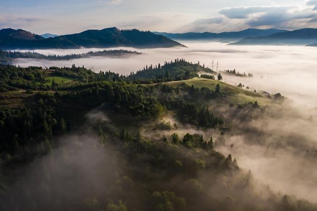 Вид с воздуха на красочный смешанный лес, окутанный утренним туманом в прекрасный осенний день Бесплатные Фотографии