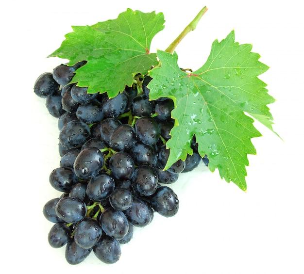 白い背景の水滴と熟した秋のブドウ Premium写真