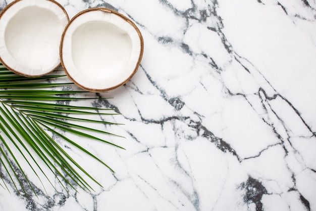 熱帯のココナッツと大理石のヤシの木 Premium写真