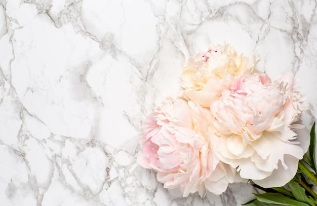 Красивый белый пион цветок на мраморной поверхности с копией пространства Premium Фотографии