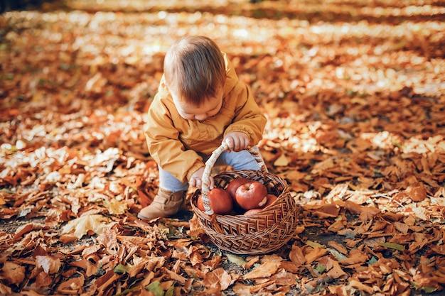 秋の公園で座っている小さな男の子 無料写真