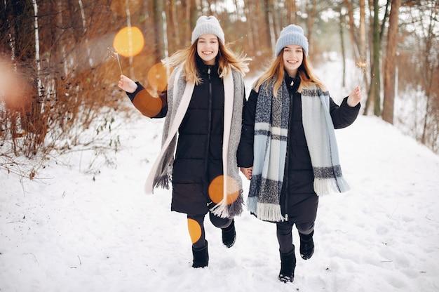 Две милые девушки в зимнем парке Бесплатные Фотографии