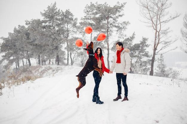 Влюбленная пара гуляет в зимнем парке Бесплатные Фотографии