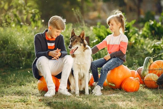 多くのカボチャの近くの庭に座っているかわいい子供 無料写真