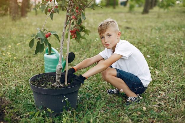 Милый маленький мальчик, посадить дерево в парке Бесплатные Фотографии