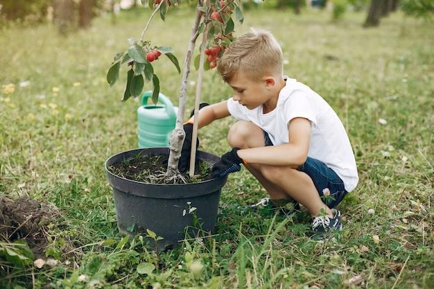 公園で木を植えるかわいい男の子 無料写真