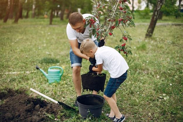 Отец с маленьким сыном сажают дерево на дворе Бесплатные Фотографии