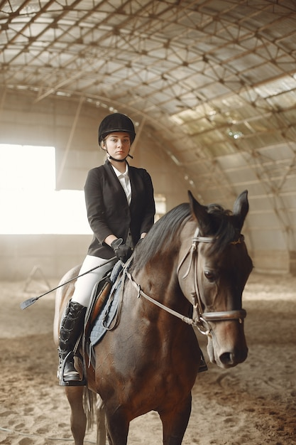 馬とライダーの列車 無料写真